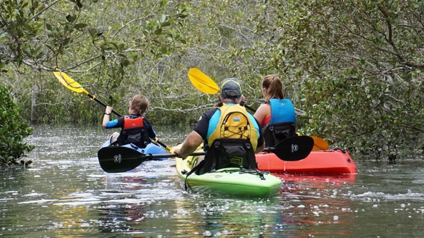 Recreational-Kayaks-Tile