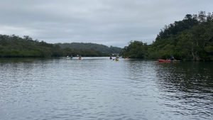 Kayakers making their way through the channel between Brisbane Water and Kincumber Broadwater
