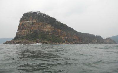 Lion Island circumnavigation 12 Jan 20