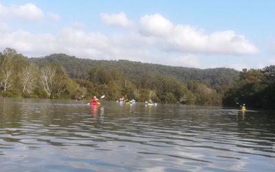 Gosford to Narara Creek – 22 Jan 2020