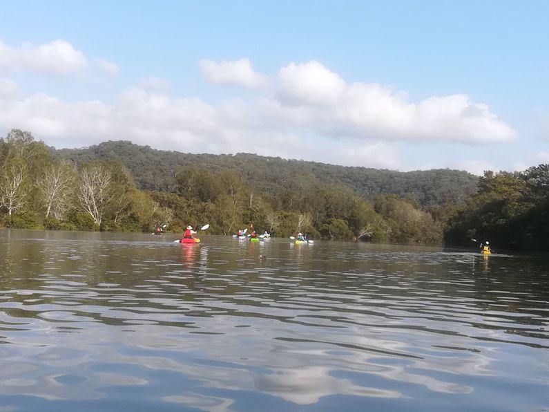 Paddlers paddling up Narara Creek