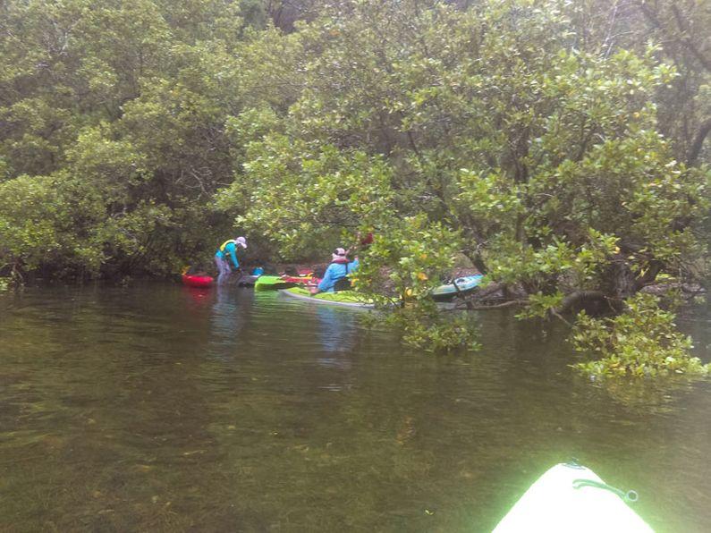 Kayak landing