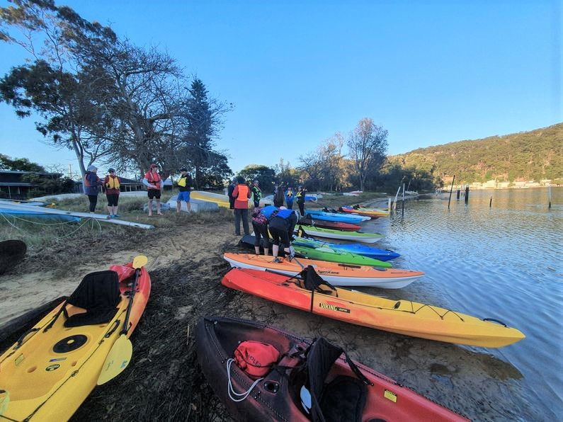 Line of kayaks and paddlers preparing to launch