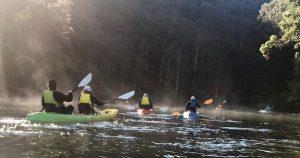 Paddlers in mist on Mooney Mooney Creek