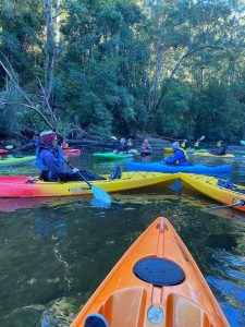 Group of kayakers in the upper reaches of Mooney Mooney Creek