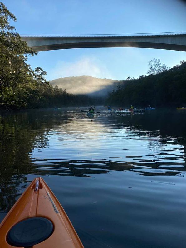 View of M1 from underneath paddling up Mooney Mooney Creek