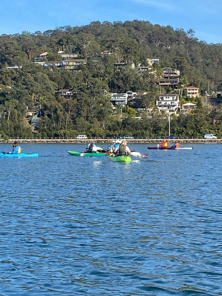 Kayakers paddling on Brisbane Water